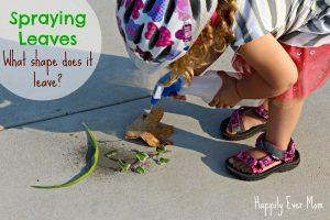 Spraying Leaves