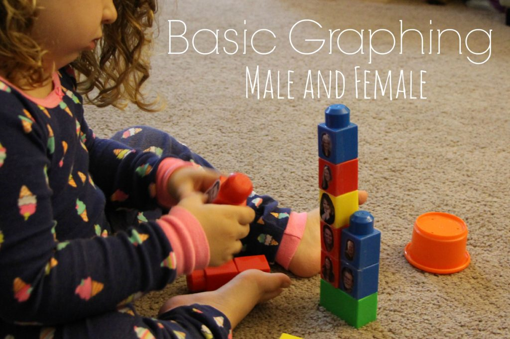 Family Duplo Blocks basic graphing by male and female