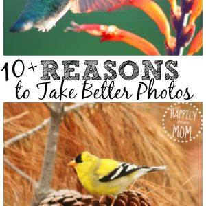10 Reasons to Take Better Photos