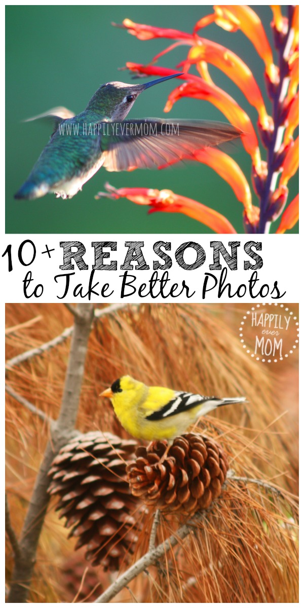 take-better-photos