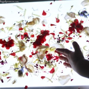 {Sticky Flowers} Light Table Activities for Kids