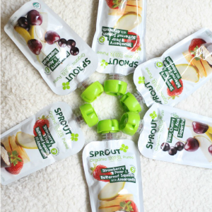 Healthy Toddler Snacks for On The Go