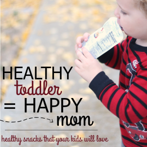 Snacks Kids Will Love When You're On The Go!