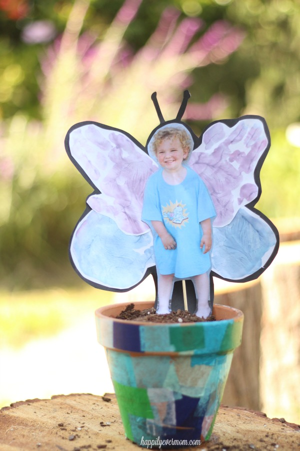 groables-butterfly-pot