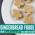 The Gingerbread Fudge Recipe Grandma Should Have Taught You