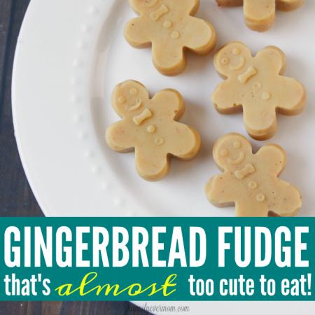 gingerbread-fudge-square