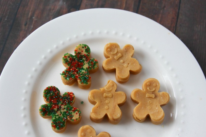 gingerbread-fudge-too-cute-to-eat